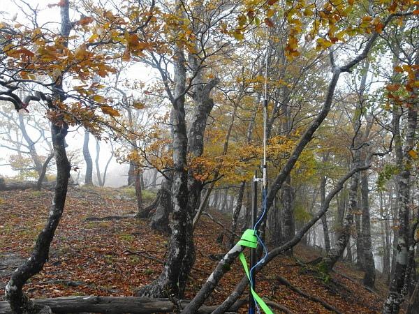 紅葉はおあずけ霧と暴風の明神岳  SOTA#JA/ME-002_f0073587_23474927.jpg