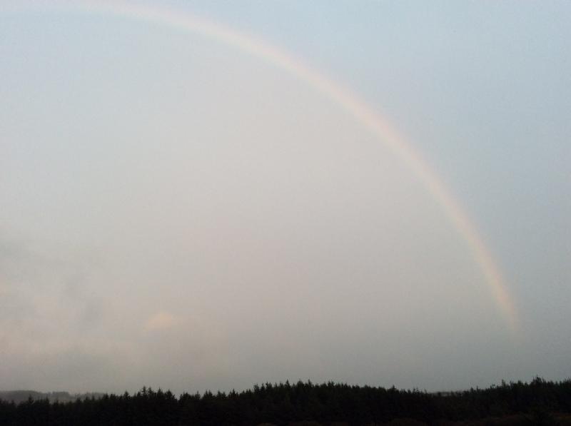 虹が答えてくれました_b0110999_03242649.jpeg