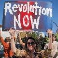 アーレントの革命論の誤謬と破綻 - OWSとBLMが導くアーレントの学説崩壊_c0315619_13311625.png