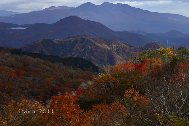 日光 10月の特別撮影会 ~霧降高原の紅葉は今が見頃~_e0227942_22373705.jpg