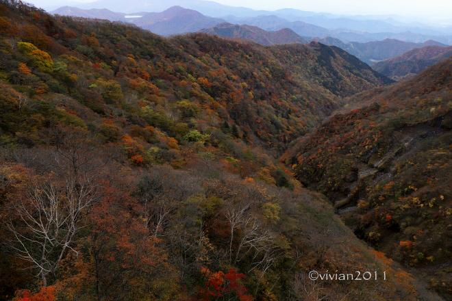 日光 10月の特別撮影会 ~霧降高原の紅葉は今が見頃~_e0227942_22435645.jpg
