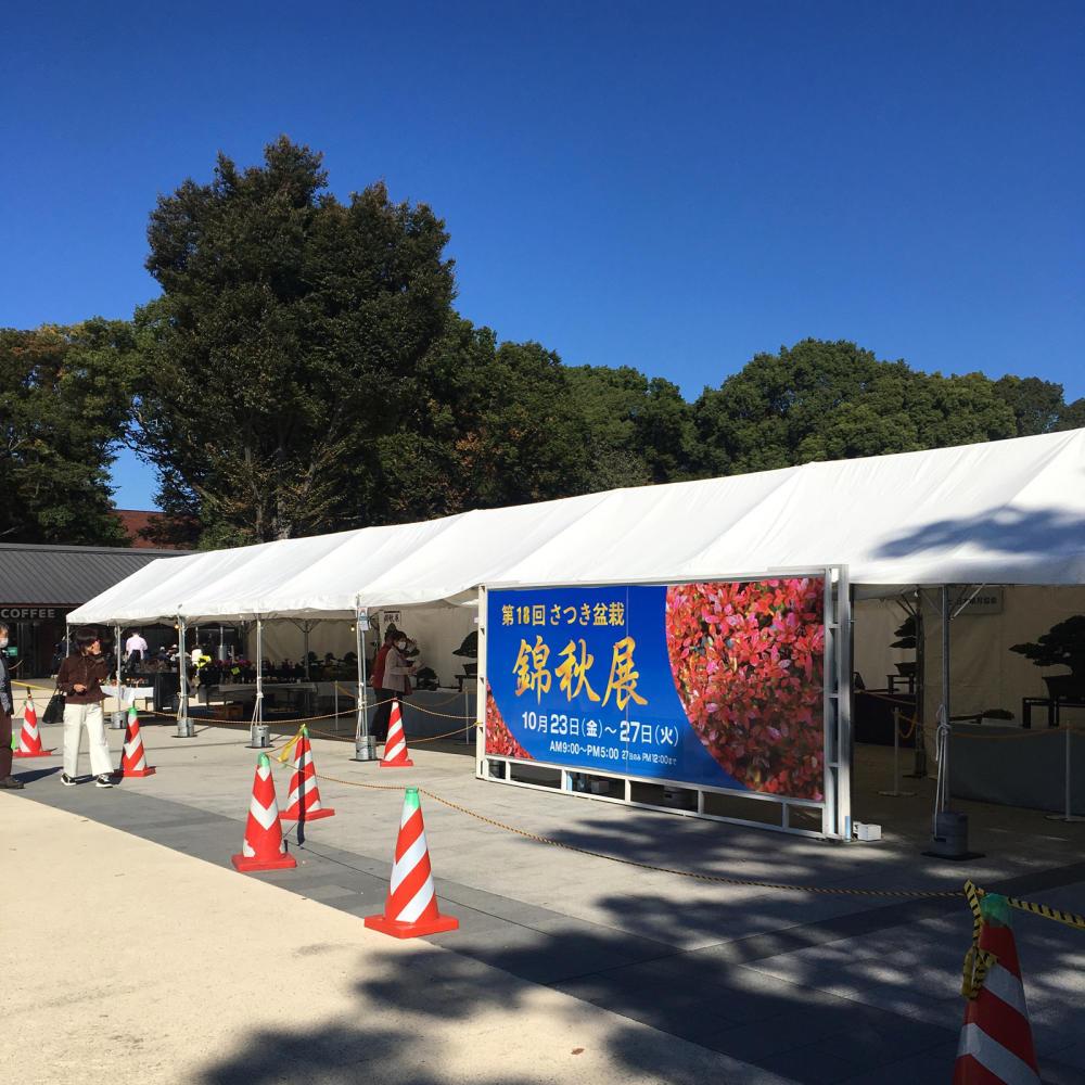 「さつき盆栽 錦秋展」は以前も来たことあった_c0060143_21005976.jpg