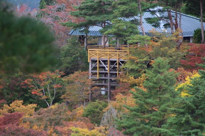 里山の秋と神社めぐり_b0238249_20082817.jpg