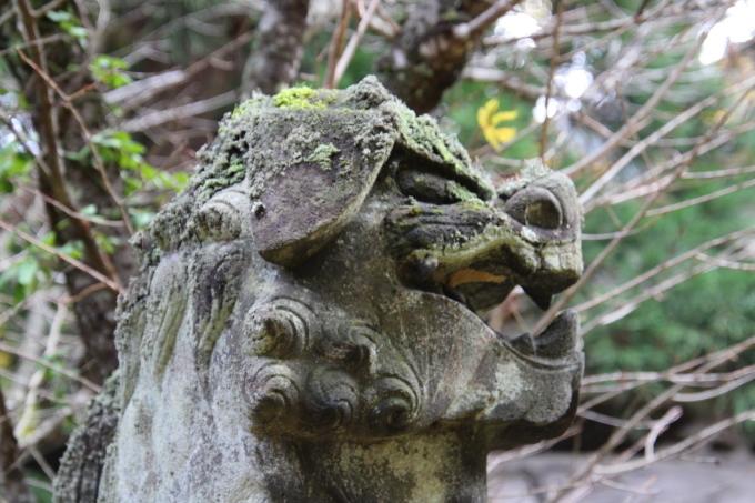 里山の秋と神社めぐり_b0238249_20141866.jpg