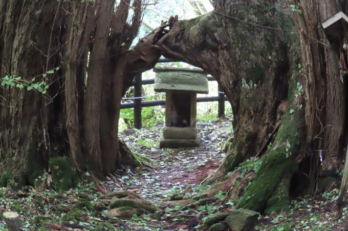 里山の秋と神社めぐり_b0238249_20384082.jpg