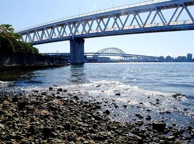 住吉川から六甲アイランドまでウォーキング♪_b0194861_17425276.jpg