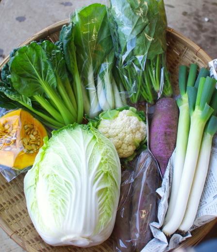 今週の野菜セット(10/27~10/31着)_c0110869_10495594.jpg