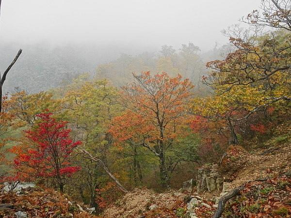 紅葉はおあずけ霧と暴風の明神岳  SOTA#JA/ME-002_f0073587_00323449.jpg
