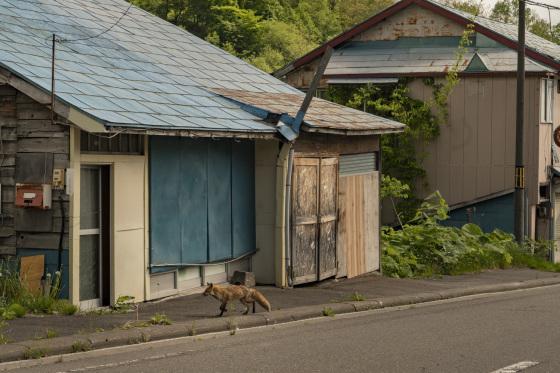 北海道「夕張市本町商店街」_a0096313_15274129.jpg