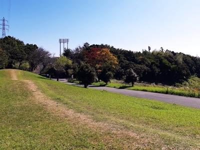いつもの里山公園で_f0129726_19123884.jpg