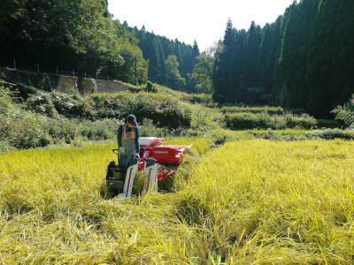 米作りの挑戦(2020) 稲刈りの様子!今年の問題点と来年へむけての課題!(後編)_a0254656_17234421.jpg