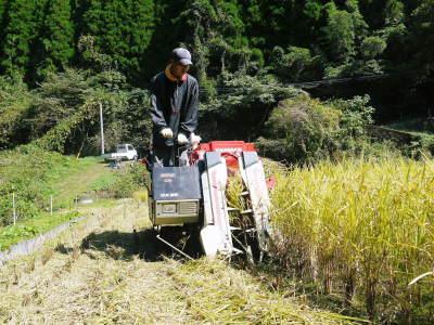 米作りの挑戦(2020) 稲刈りの様子!今年の問題点と来年へむけての課題!(後編)_a0254656_17264909.jpg