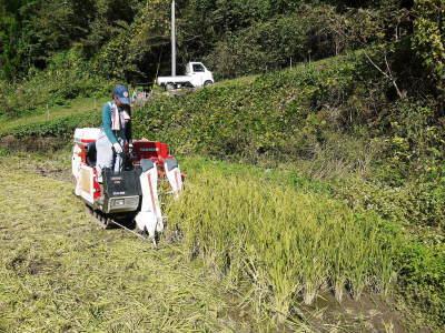 米作りの挑戦(2020) 稲刈りの様子!今年の問題点と来年へむけての課題!(後編)_a0254656_17312962.jpg