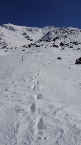 △▲北海道最高峰!雪で白くなった旭岳に行ってきました△▲_d0198793_15044371.jpg