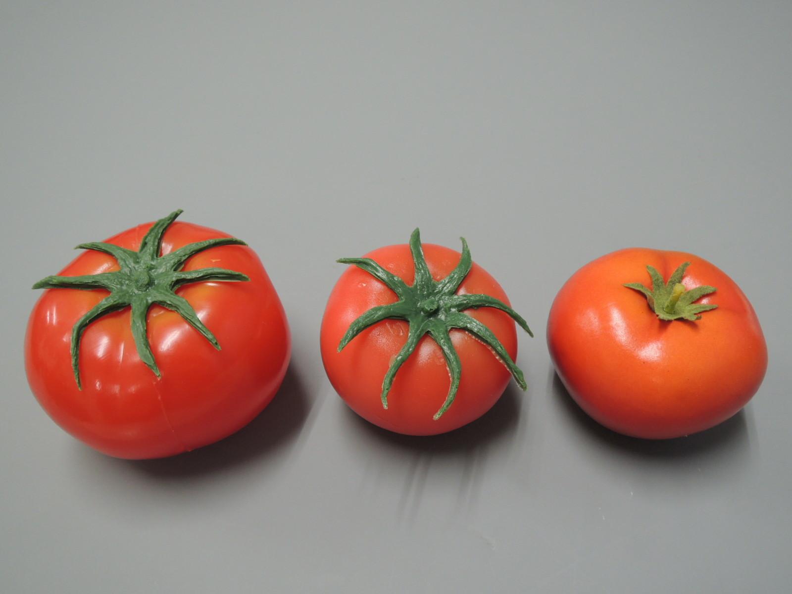 トマト & tomato & とまと_e0142313_00162578.jpg