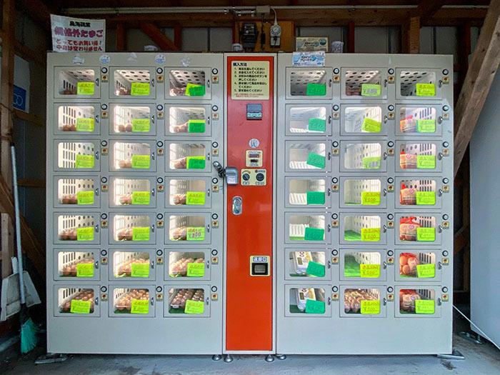 鳥海鶏業 卵自動販売機 / iPhone 11_c0334533_16043663.jpg