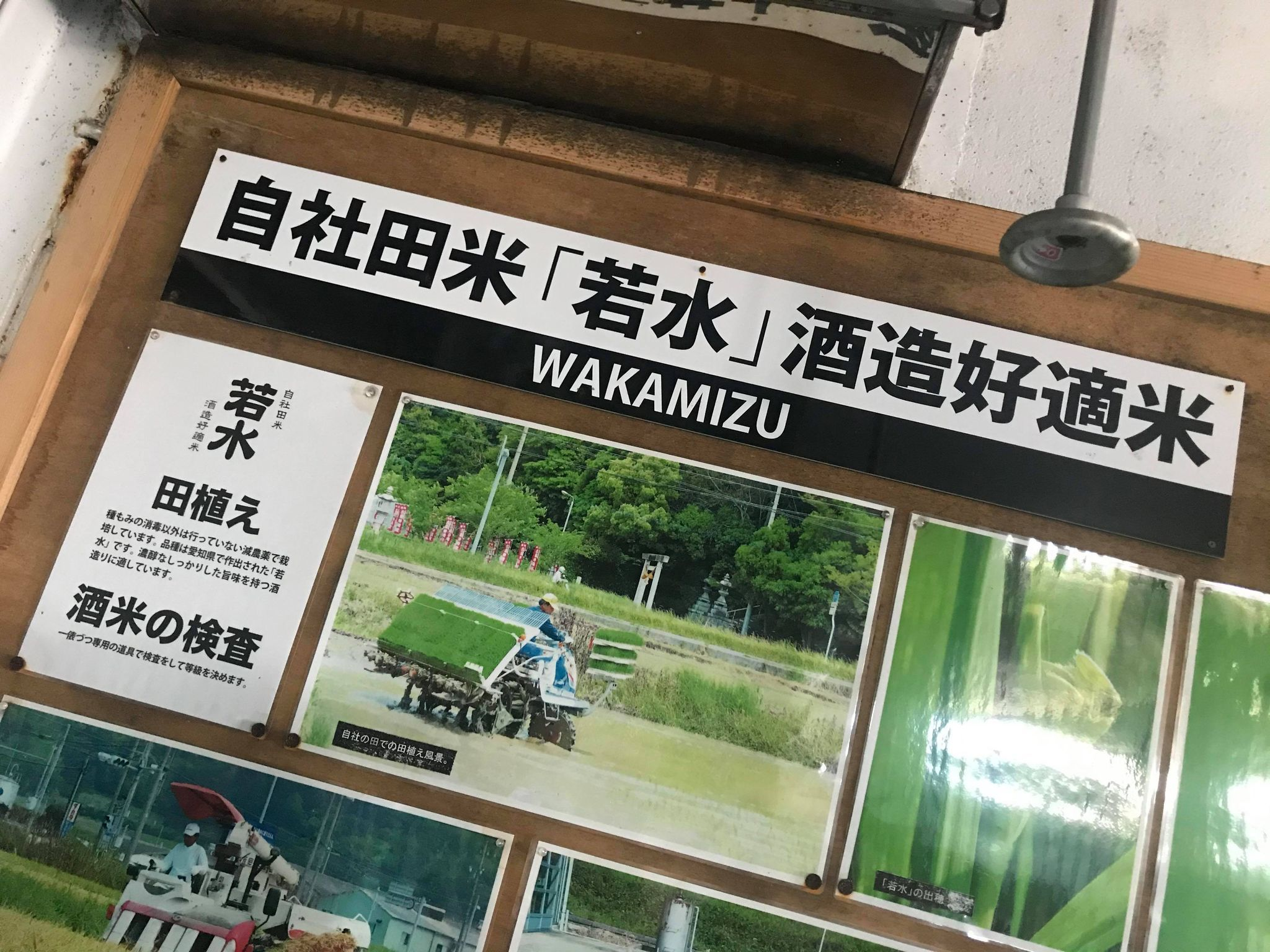 【蔵元訪問】白老=HAKUROU=SHIRAOI=ポテンシャル無限大∞_e0173738_09261987.jpg
