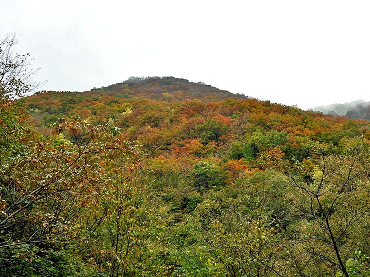 紅葉の大万木山①_f0214649_19361538.jpg