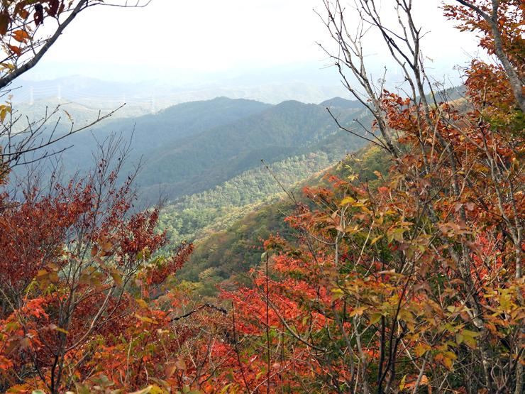 紅葉の大万木山①_f0214649_19395901.jpg