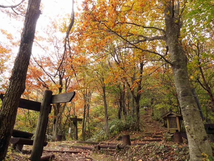 紅葉の大万木山①_f0214649_19403885.jpg