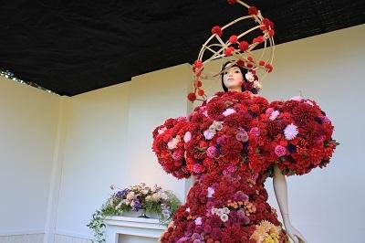 弘前城植物園菊の展示_2020.10.28撮影_d0131668_13321071.jpg