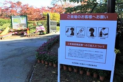 弘前城植物園菊の展示_2020.10.28撮影_d0131668_13365143.jpg