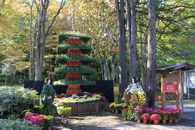弘前城植物園菊の展示_2020.10.28撮影_d0131668_13382878.jpg