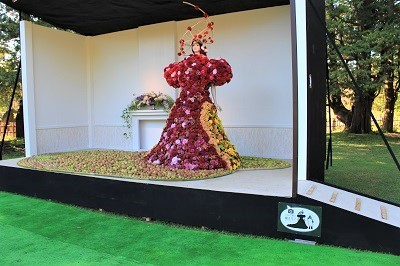 弘前城植物園菊の展示_2020.10.28撮影_d0131668_13455279.jpg
