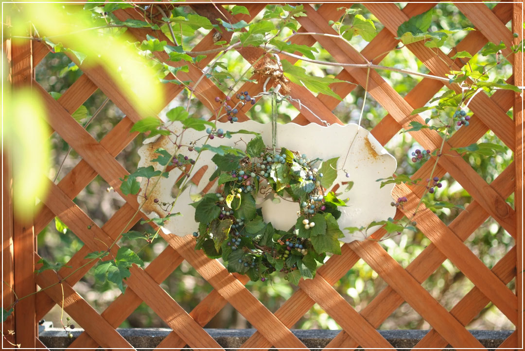 野ブドウのリースを二つ作った日♪(10月27日)_b0075541_14181810.jpg