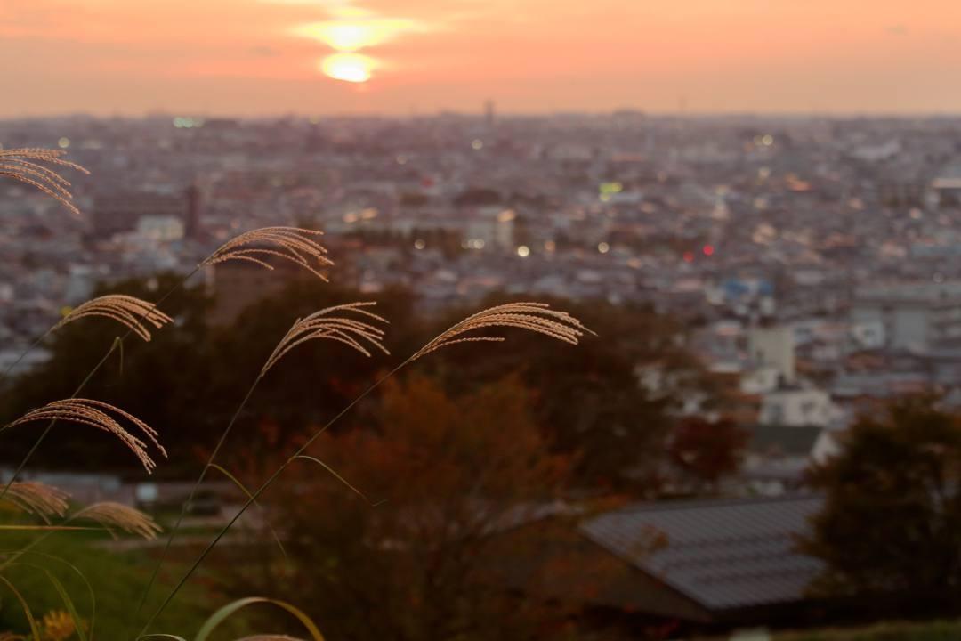 月と夕陽とススキ_e0403850_22371598.jpg