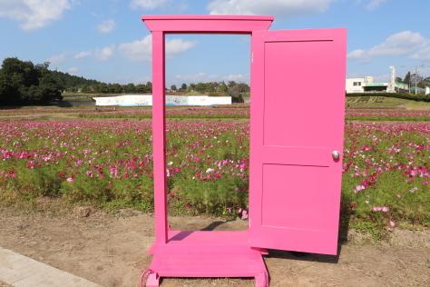 どこでもドア!_d0118968_13012609.jpg