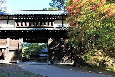 弘前公園を秋さんぽ_2020.10.28撮影_d0131668_11583871.jpg
