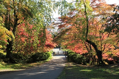 弘前公園を秋さんぽ_2020.10.28撮影_d0131668_11590491.jpg