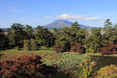 弘前公園を秋さんぽ_2020.10.28撮影_d0131668_12021182.jpg