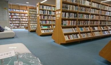 午後は図書館へ_b0207284_20351930.jpg