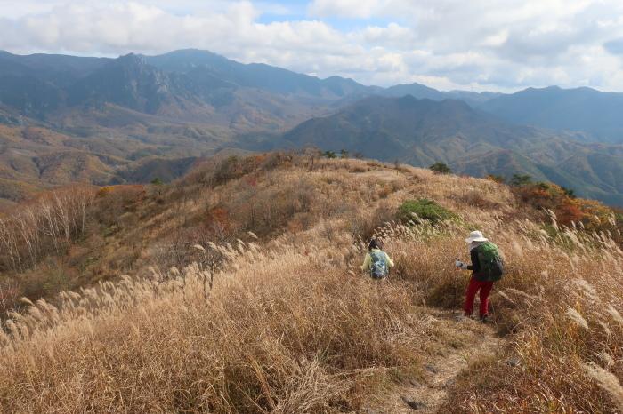 横尾山と、おいしい学校_d0138986_19302576.jpeg