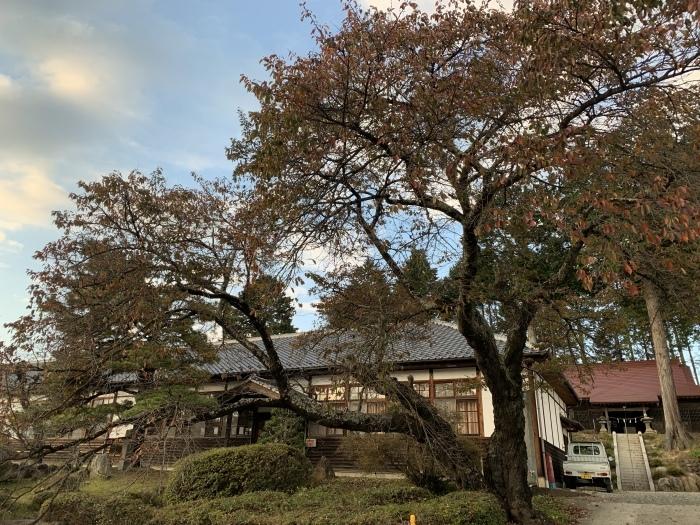 横尾山と、おいしい学校_d0138986_19310096.jpeg