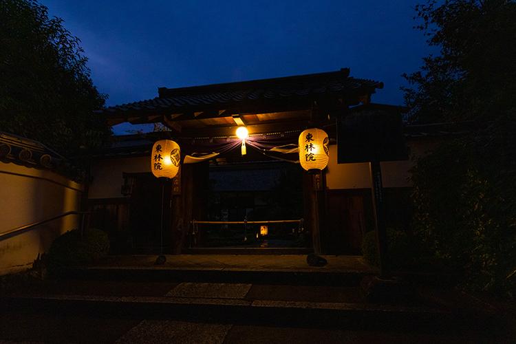 東林院(妙心寺塔頭)_e0051888_22411036.jpg