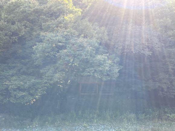 河原ランチ ~風の挨拶、光の矢~_c0141013_15120142.jpg