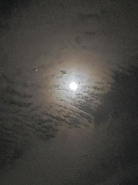 月姫のドレスと13夜♪_b0162357_06412072.jpeg