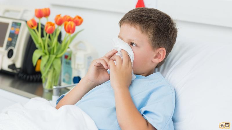 治感冒這四種偏方效果好_b0363588_13384200.jpg