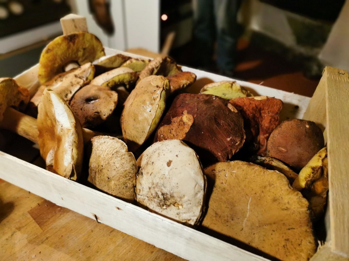 ポルチーニと豚肉のパイ包み_f0106597_17380006.jpg
