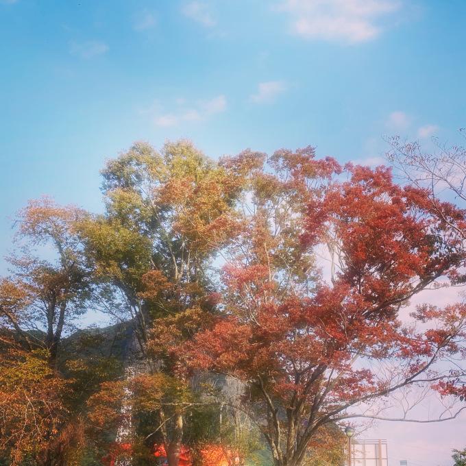 10月最終日_d0155416_10270542.jpeg
