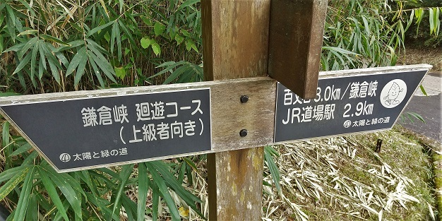 例会下見山行、鎌倉峡_a0143839_19154980.jpg