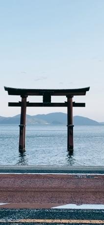 水の観音 -湖北、渡岸寺の十一面観音像と戦国時代ー_a0020162_01355498.jpeg