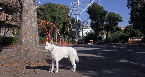Vol.1525 小倉西公園_a0117039_19523536.jpg