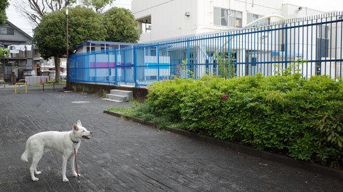 Vol.1525 小倉西公園_a0117039_19525600.jpg