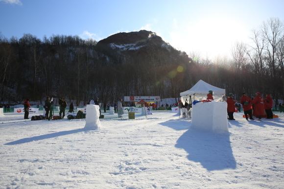 雪のコートが恋しい  ユキガッセン_e0324053_18265959.jpg
