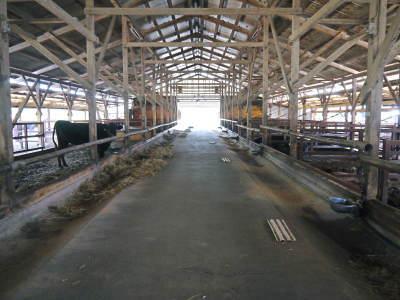 お歳暮にいかがですか!熊本県産黒毛和牛100%のハンバーグステーキを数量限定で予約販売中!_a0254656_17443594.jpg
