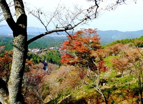 紅葉の吉野山を散策♪_b0194861_21085397.jpg